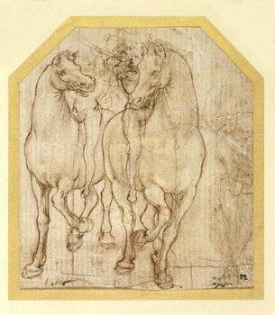 Study of Horses and Riders, c.1480 Billede på lærred