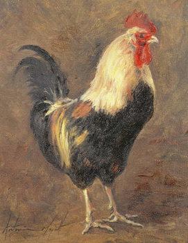 The Cockerel, 1999 Billede på lærred