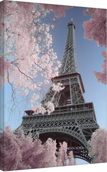 David Clapp - Eiffel Tower Infrared, Paris Billede på lærred
