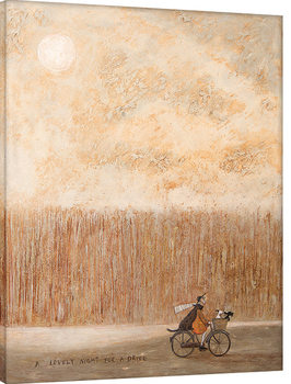 Sam Toft - A Lovely Night for a Drive Billede på lærred