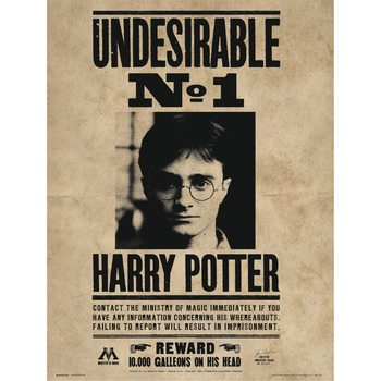 Reproducción de arte  Harry Potter - Undesirable No1