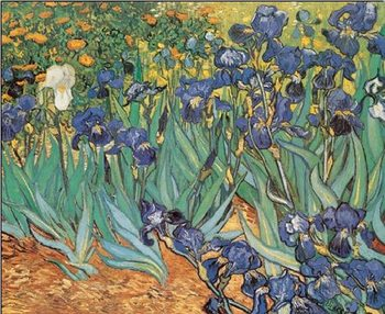 Lámina Irises, 1889