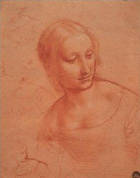 Reproducción de arte Portrait of a Young Woman - Busto di giovane donna