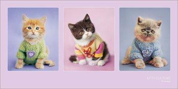 Reproducción de arte Rachael Hale - Kitty Couture