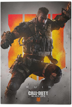 Leinwand Poster Call of Duty: Black Ops 4 - Ruin