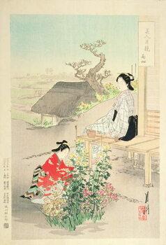 Leinwand Poster 'Chrysanthemum Garden'