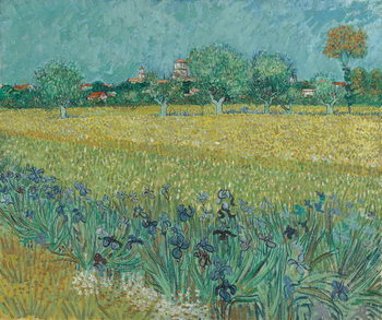 Leinwand Poster Field with Flowers near Arles, 1888