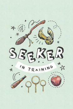 Leinwand Poster Harry Potter - Sucher im Training