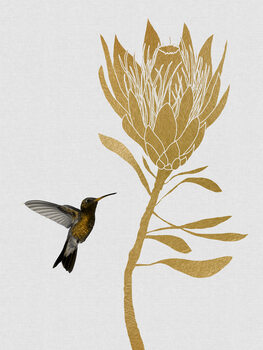 Leinwand Poster Hummingbird & Flower I