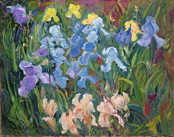 Leinwand Poster Irises: Pink, Blue and Gold, 1993