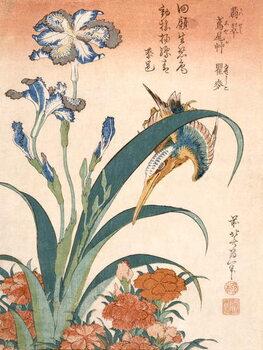 Leinwand Poster Kingfisher