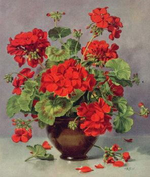 Leinwand Poster PB/273 Geranium in an Earthenware Vase