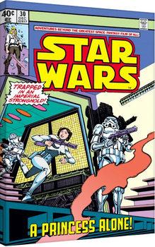 Leinwand Poster Star Wars - A Princess Alone