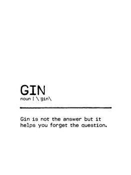 Leinwand Poster Quote Gin Question