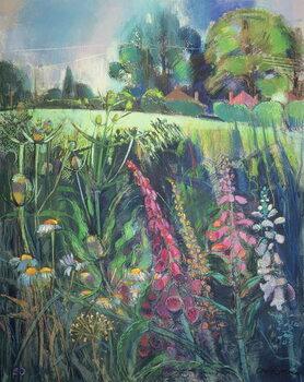Leinwand Poster Summer Field