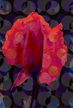 Leinwand Poster Tea Rose 3b