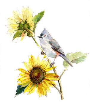 Leinwand Poster Titmouse with Sunflower, 2016,
