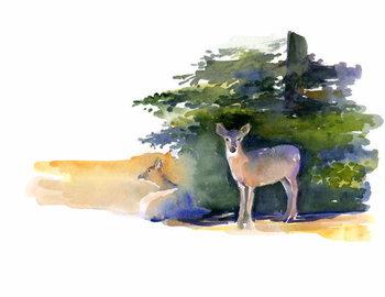 Leinwand Poster Two Deer, 2014,