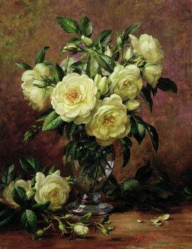 Leinwand Poster White Roses