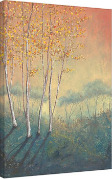 Leinwand Poster Serena Sussex - Silver Birch Tree in Autumn