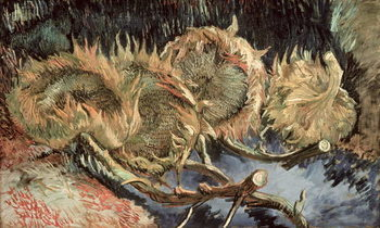 Lerretsbilde Four Withered Sunflowers, 1887