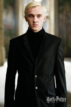 Lerretsbilde Harry Potter - Draco Malfoy