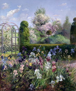Irises in the Formal Gardens, 1993 Lerretsbilde