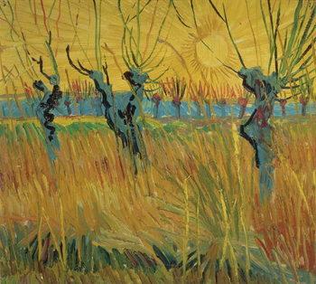 Pollarded Willows and Setting Sun, 1888 Lerretsbilde