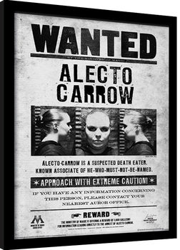 Harry Potter - Alecto Wanted Poster Incorniciato