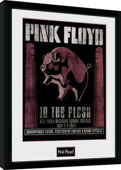 Pink Floyd - 1977 Poster Incorniciato