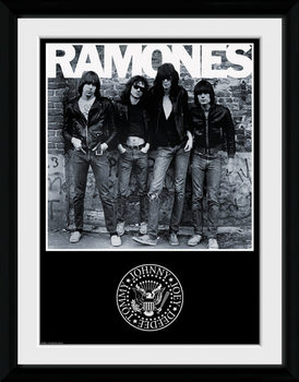The Ramones - Album locandine Film in Plexiglass