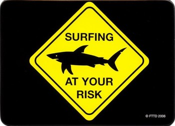 AT YOUR RISK - surfing Magneten