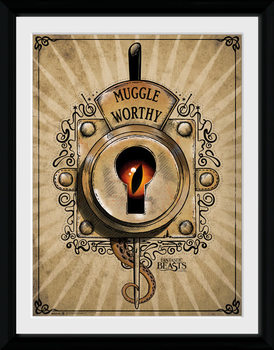 Animales fantásticos y dónde encontrarlos - Muggle Worthy marco de plástico