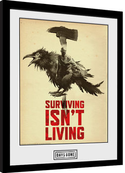 Poster enmarcado Days Gone - Crow