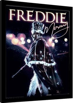 Freddie Mercury - Royal Portrait Poster enmarcado