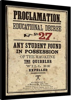 Harry Potter - Educational Decree No. 27 Poster enmarcado