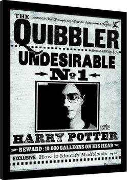 Poster enmarcado Harry Potter - The Quibbler
