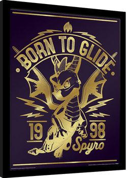 Spyro - Gold Born To Glide Poster enmarcado