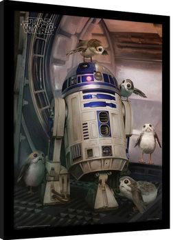 Star Wars: Episodio VIII - Los últimos Jedi- R2-D2 & Porgs Poster enmarcado