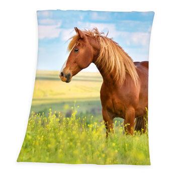 одеяло Horse