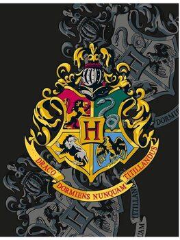 Deken Harry Potter - Hogwarts