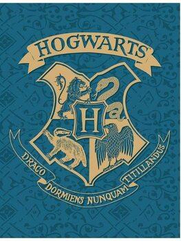 Prikrývka Harry Potter - Hogwarts