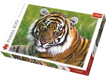 Puzzle Tiger