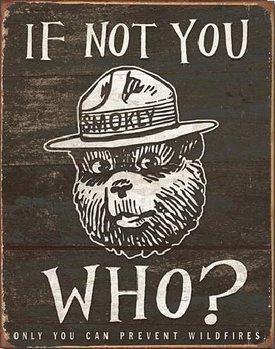 Plåtskylt SMOKEY BEAR - If Not You