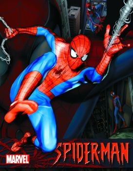 Metallschild SPIDER-MAN