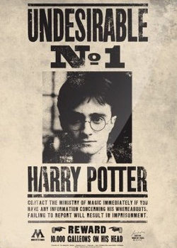Harry Potter Undesirable No.1 Metallskilt