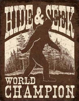 Metalowa tabliczka Big Foot - Hide & Seek