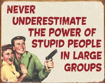 Metalskilt EPHEMERA - Stupid People