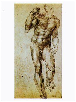 Michelangelo - Studio Di Nudo Festmény reprodukció