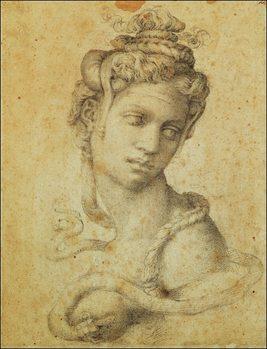 Michelangelo - Testa Di Cleopatra Festmény reprodukció